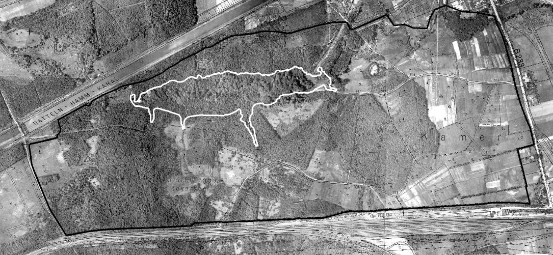 Um 1926 zeigt sich das Beverseegebiet im zentralen Bereich bewaldet (Luftbildbefliegung 1925 bis 1930). Regionalverband Ruhr, CC BY-NC-SA 4.0