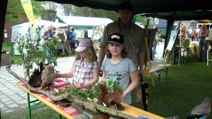 Kam bei den Besuchern gut an – der Schautisch mit typischen Waldpflanzen und Tieren des Waldes.