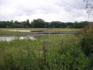 Wassermangel trotz Regensommer - die geschlossene Zuflussschleuse sorgt für eine befristete Dürre auf der Kiebitzwiese während der Bauarbeiten