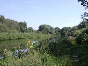 Östlich von Lünen wird die Lippe von Silberweiden-Auwald, einem europaweit bedeutsamen und geschützten Lebensraumtyp, begleitet