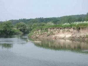 Entfesselte Steiluferbereiche nordöstlich des Dorfes Heil wurden schnell von Uferschwalben und Eisvögeln besiedelt
