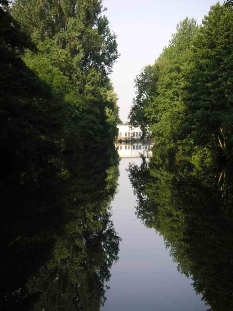 Still und im Dauerstau - der Obergraben des Laufwasserkraftwerkes, Lebensraum für Haubentaucher und Co