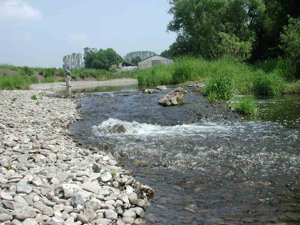 Grobkiesiges Flussbett der Alten Ruhr im NSG Obergraben westlich Wickede während der sommerlichen Trockenphase