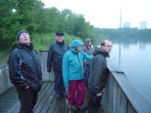 Auch bei schlechtem Wetter gab es viel zu sehen – auf der Aussichtsplattform am Beversee