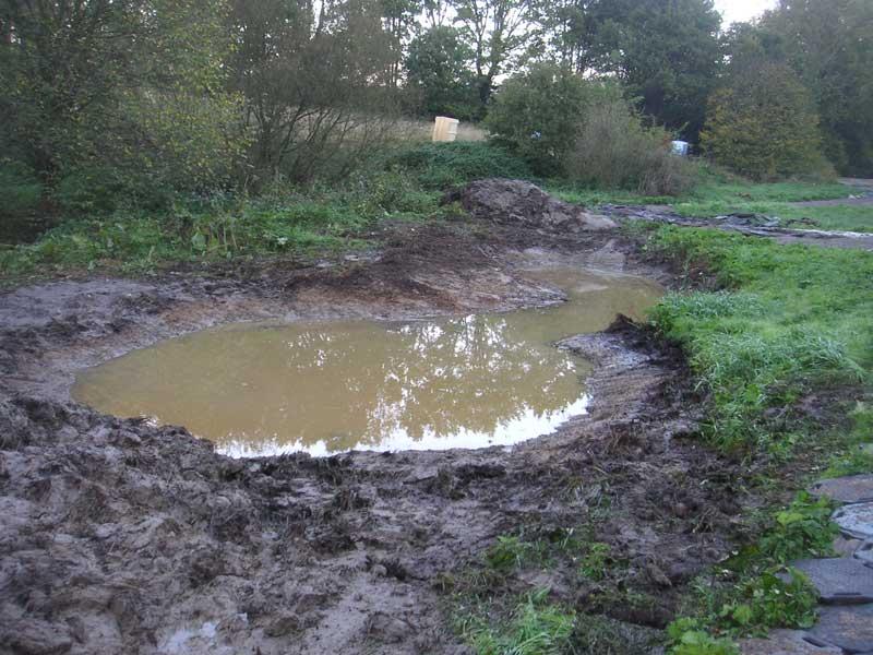 Trostpflaster: Entschlammung verlandeter Kleingewässer im Gebiet