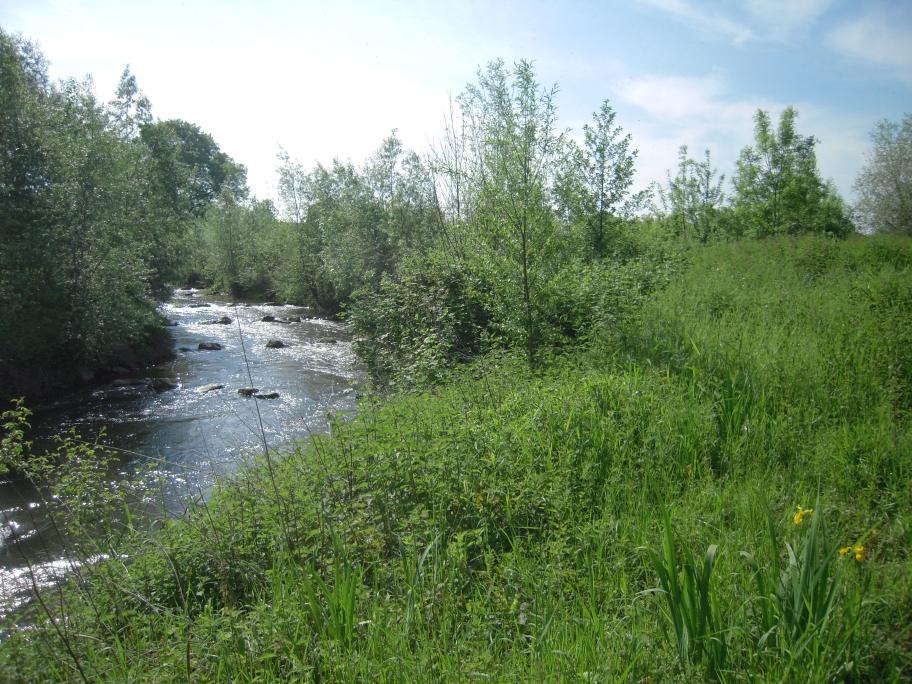 der Auf- oder Abstieg durch das Umgehungsgerinne wird für Fische und andere Gewässerorganismen  durch 26 strömungsärmere Steinbecken ermöglicht