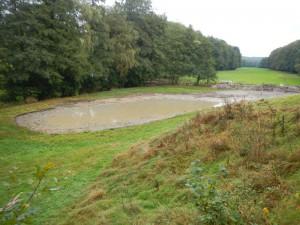 Nach der Entkrautung - Teich an der Elsetalstraße