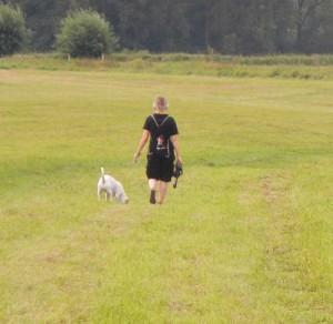 Hundehalter verwechseln das Naturschutzgebiet offensichtlich mit einer Spielwiese für Vierbeiner
