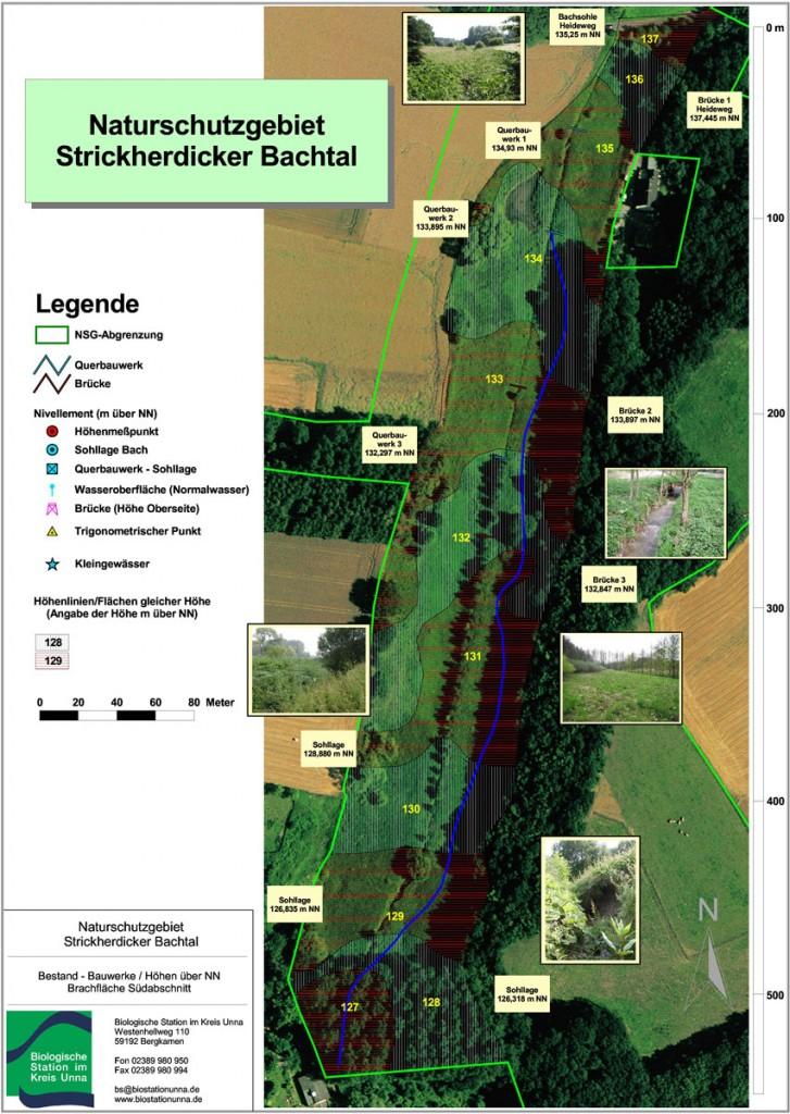 Bestandsplan 2006 - damals blau eingezeichnet die mögliche Lage eines renaturierten Bachlaufs