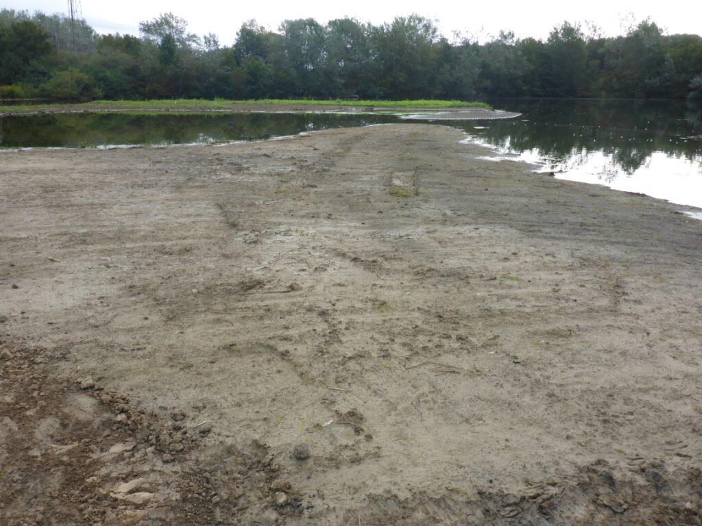 """aus kleiner schlammiger Uferflur mach große schlammige Uferflur (ca. 10 cm über """"Normalwasserstand"""" des Altwassers)"""