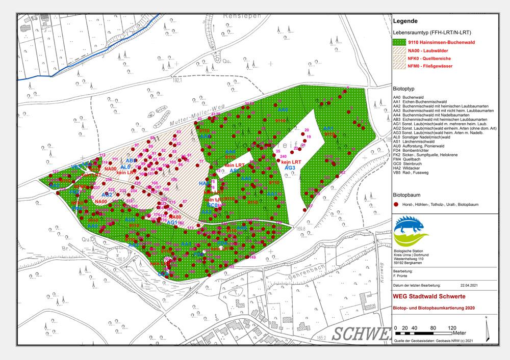 Wildnisentwicklungsgebiet Stadtwald Schwerte